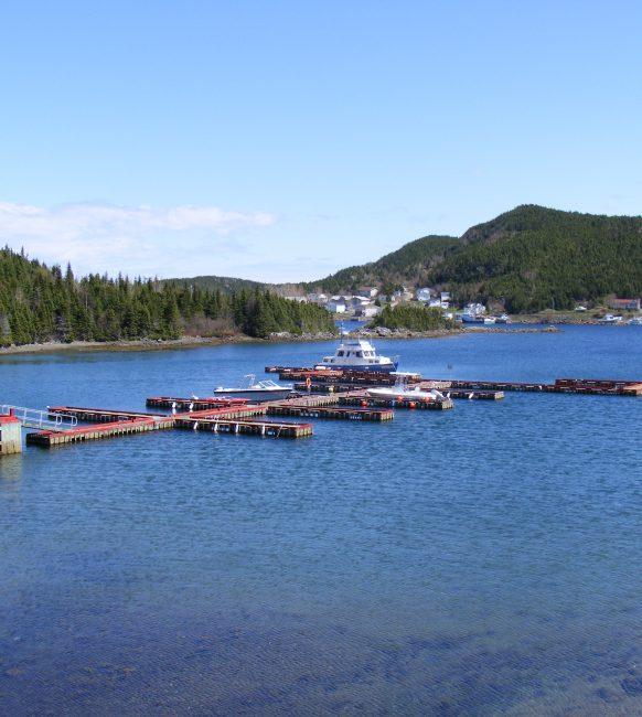 docks1